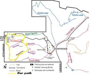 T-Bird Map for Trails Brochure1